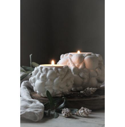 Majas Seashell Candelholder Stor